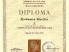 diploma_kresimir_marzic